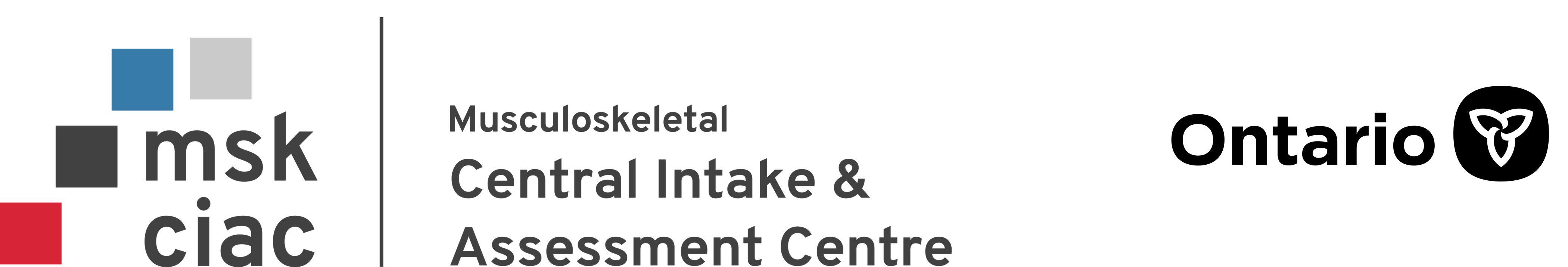Program name Musculoskeletal Central intake and Assessment Centre